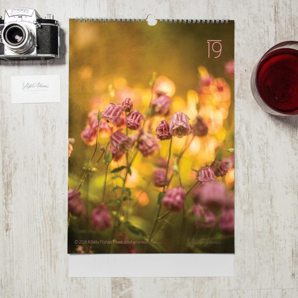 Titulní strana fotografického kalendáře pro rok 2019 s růžovými květinami